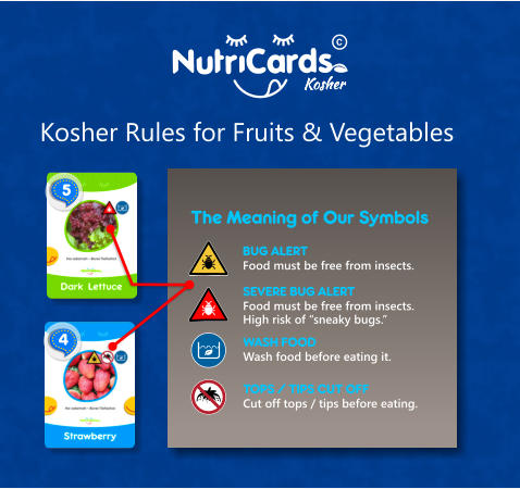 "The Meaning of Our Symbols  SEVERE BUG ALERT Food must be free from insects. High risk of ""sneaky bugs."" WASH FOOD Wash food before eating it. BUG ALERT Food must be free from insects. TOPS / TIPS CUT OFF Cut off tops / tips before eating.  4  5 Kosher Rules for Fruits & Vegetables Kosher"