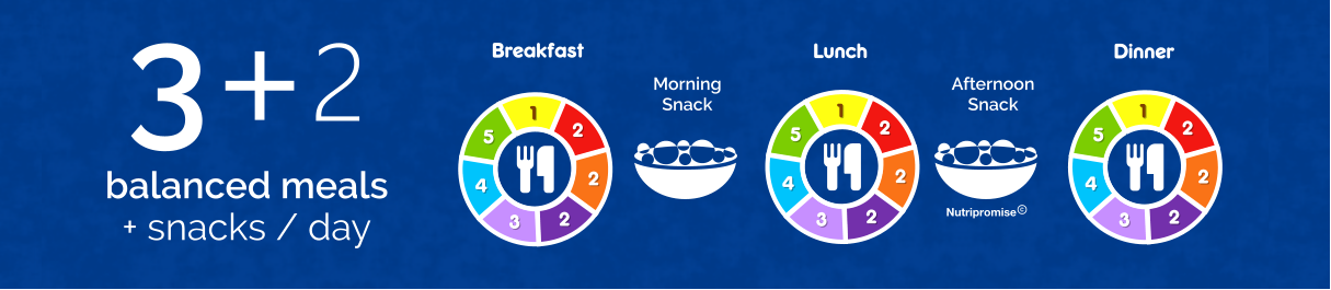 Breakfast Lunch Dinner 3+2balanced meals + snacks / day Afternoon Snack Morning Snack