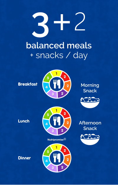 3+2balanced meals + snacks / day Lunch Dinner Breakfast Morning Snack Afternoon Snack